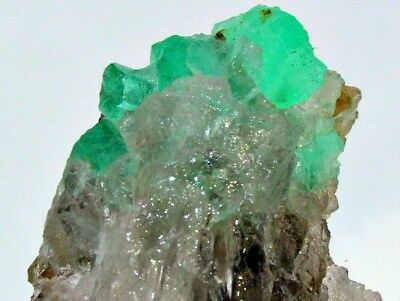 50 CRT Full terminated top quality top green natural Emerald crystals on quartz