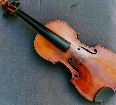 """Antique Violin 4/4 23"""" Nicolai Amatus Chin Rest Nuts Wood Fiddle Case with Bows"""