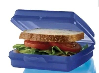 TUPPERWARE New SANDWICH KEEPER Hinged LUNCH Indigo BPA FREE Free US Shipping