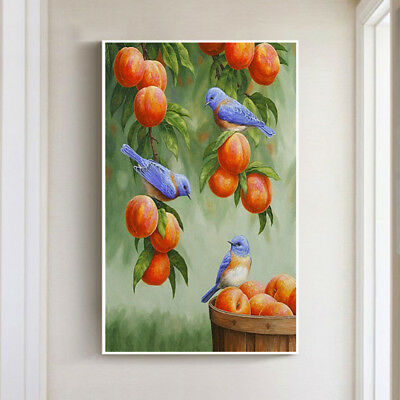 1set diy 5d diamond painting bird and fruit embroidery home wall decoration  X