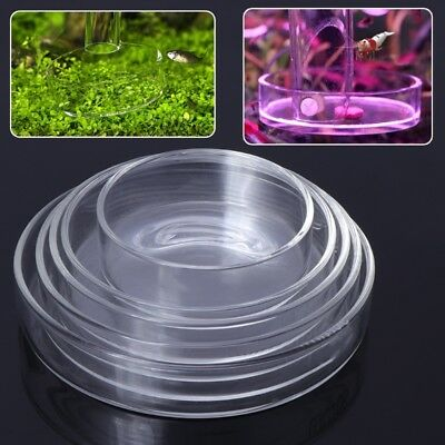 New Arrival Fish Tank Feeder Aquarium Shrimp Glass Feeding Bowl Dish Tray 6 Size