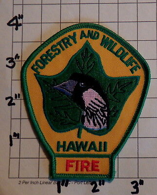 HAWAII Forestry & Wildlife FIRE Division Patch           ***NEW***