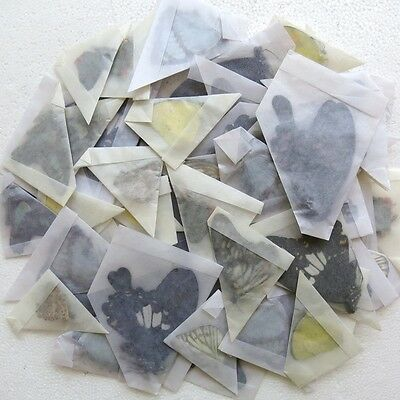 colorful 50 mixed unmounted butterfly SPRING FORM artwork material A1 #4