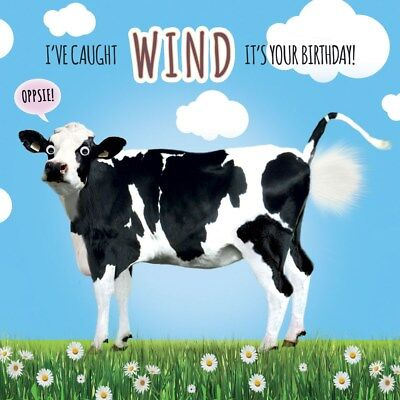 Funny Cow Birthday Card 3d Goggly Eyes Fluff Caught Wind It S Your
