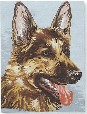 ADORABLE ALSATION / GERMAN SHEPHERD tapestry to stitch - 30 x 40cm! !