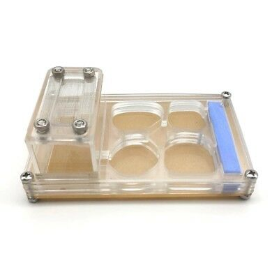 Acrylic Ant Nest Housing Medium Ant Farm Formicarium For Ant Colony