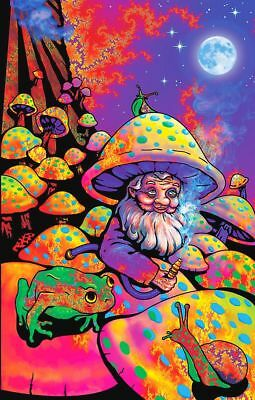 Psychedelic King Mushroom Magic Trippy Groovy Hippy Gorgeous Sticker or Magnet