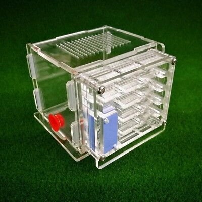 Acrylic Mini Ant Nest Housing Ant Farm Formicarium For Ant Colony