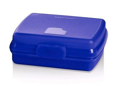 TUPPERWARE New SANDWICH KEEPER Hinged LUNCH Blue BPA FREE Free US Shipping