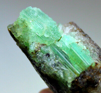 136 CRT Full terminated top quality top green Emerald crystals cluster from @AFG