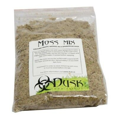 Dusk Moss Mix - Tropical Live Moss Spores