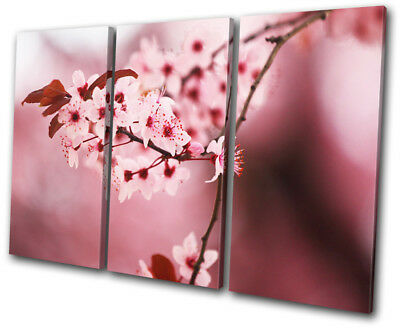Flowers Flower Cherry Blossom Tree Floral TREBLE CANVAS WALL ART Picture Print
