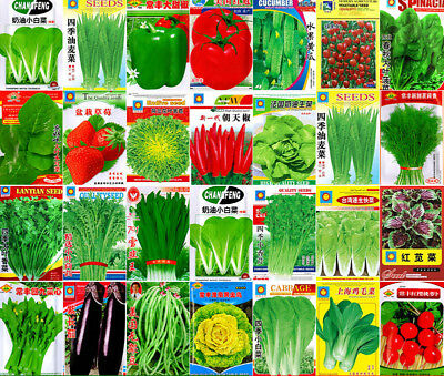 Vegetable Seeds Garden Heirloom China Original Large Colorful retail package