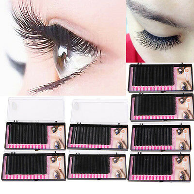 Mink Blink Lashes Tray Lash B C D J Curl For Individual Eyelash Extensions nEW