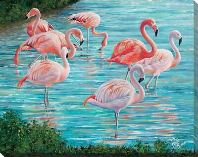 Knee Deep - Flamingos Wrapped Canvas by Rollie Brandt