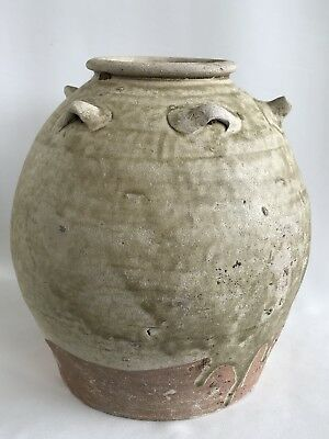 Tang Dynasty 唐代 Celadon Guangdong kiln Large Ewer With Tortoise Tail 7th Century