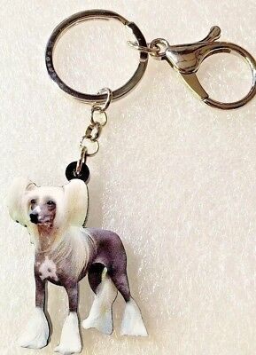 Chinese Crested Dog Realistic Pup Jewelry Acrylic Key Ring Keychain