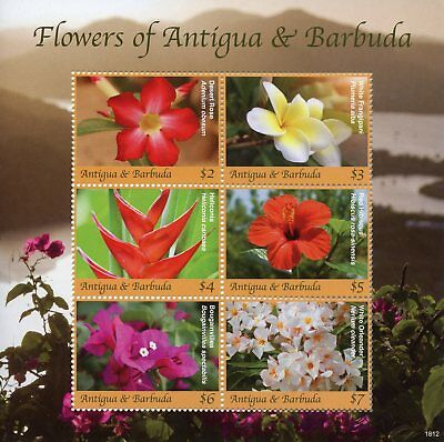 Antigua & Barbuda 2018 MNH Flowers Hibiscus Oleander Rose 6v M/S Nature Stamps