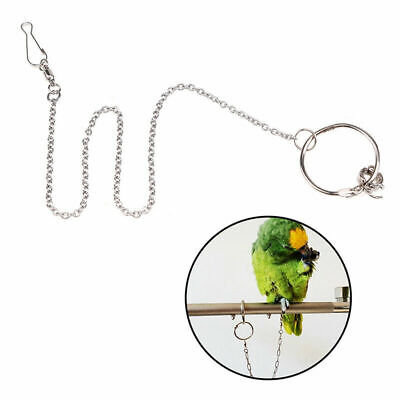 Parrot Leg Ring Ankle Foot Chain Bird Outdoor Flying Training Activity Stand