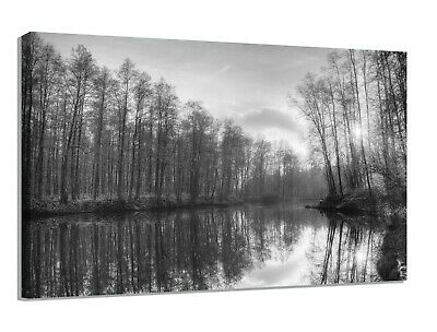 BLACK,WHITE & GREY WOODLAND CANVAS PRINT WALL ART PICTURE  18 x 32 INCH