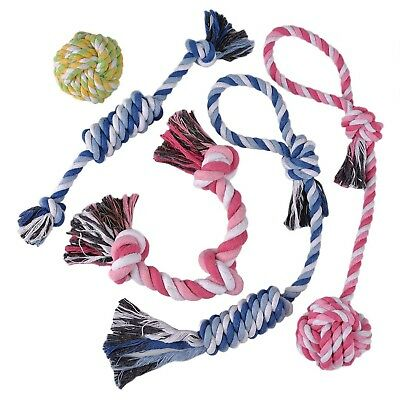 TOYSBOOM Dog Rope Toys Cotton Chew Toys for Puppy, Small Dogs, Value Pack of 5