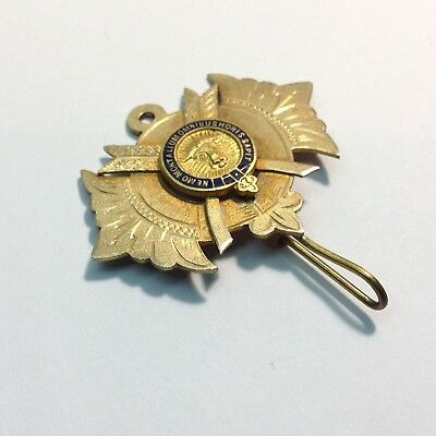 Royal Antediluvian Order of Buffaloes Lodge Medal Gold Gilt Sterling Silver