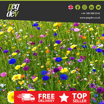 Heritage Wild Meadow Flower Plant Seed Mix Annual+Perennials For Bees Butterfly