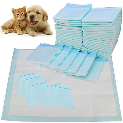 pet cleaning supplie Super absorbent cat and dog diapers deodorant sterilization