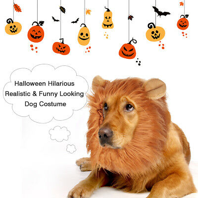 Pet Dog Costume Lion Mane Wig Hair w/ Ears Halloween Xmas Clothes Fancy Dress Up