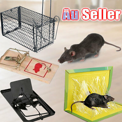 Animal Pest Wooden Mouse Control Rodent Rat Trap Catcher None Toxic Cage Mice