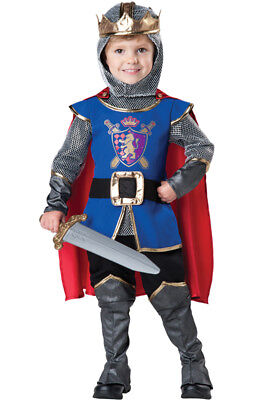 Brand New Renaissance Gallant Knight Deluxe Outfit Toddler Costume