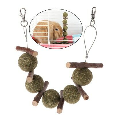 Pet Teeth Grinding Toys Hamster Rabbit Apple Tree Branch Grass Ball Hanging Cage