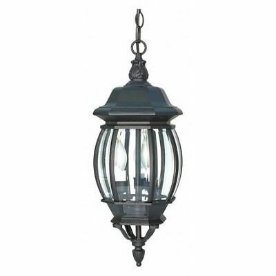 Central Park 3 Light 20 in. Hanging Lantern Clear Beveled Gl NUVO 60-896