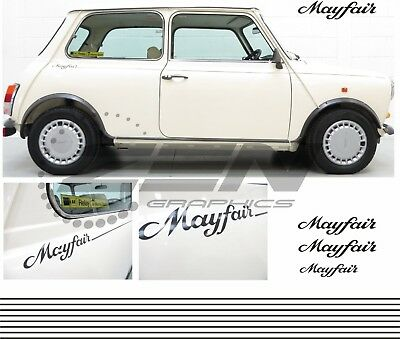 Austin Rover Mini Classic Mayfair & side pin stripes stickers Decals