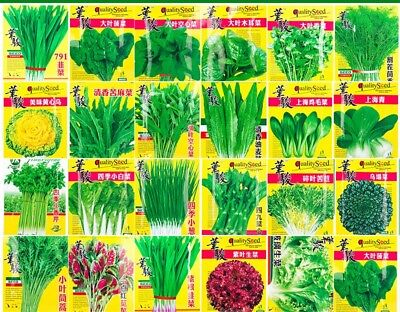 Vegetable Seeds Non-GMO yard Garden Original Colorful retail package 原装中国特色蔬菜种子