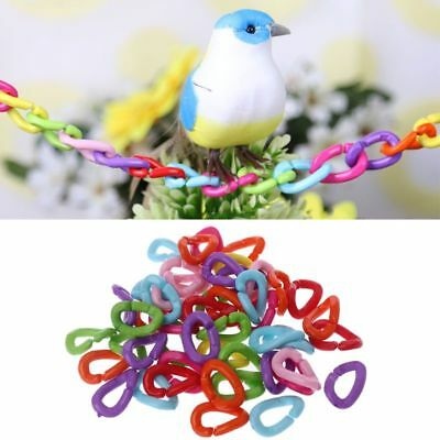 DIY 50Pcs/Pack Parrot Toys Clips Hooks Bird Stand Chain Rainbow Rat Bird Toy
