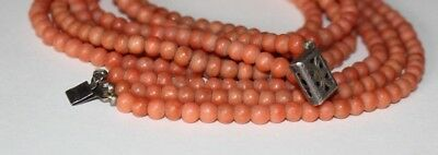 Antique Victorian Tri Strand Natural Undyed Coral Necklace. Ornate Silver Clasp.