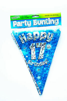Happy 17th Birthday Flag Bunting Age Boys Blue Pennant Banner Party Decorations