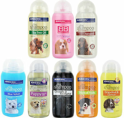 Ancol Fragrance Dog Shampoos & Conditioner  BB Baby Powder *SAMEDAY DISPATCH*