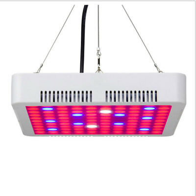 600W LED Grow Light Full Spectrum Panel Home Yard Lamp Indoor Plant Hydroponic