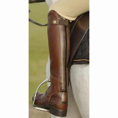 Ariat Concord Chap brown Small half chaps leather gaiters read sizing