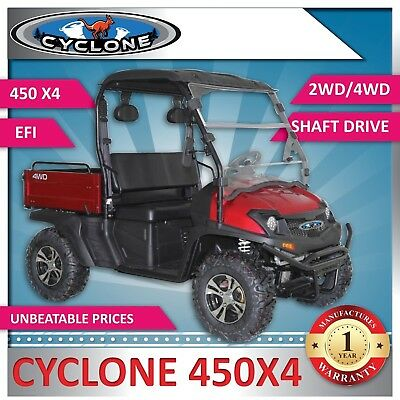 New Cyclone 450X4 eXtra Large Body 2WD/4WD - Utility Vehicle includes Windscreen