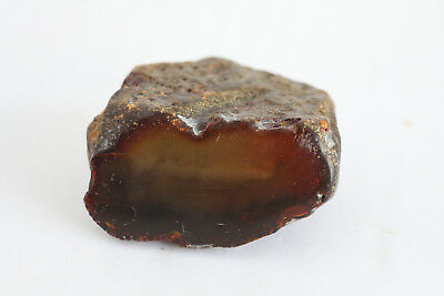 琥珀蜜蜡原石 raw amber stone rock 31.7g honey beeswax 100% natural Baltic 天然波罗的海琥珀蜜蜡
