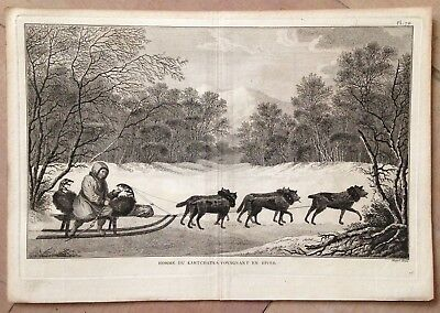 Russia Dogs In Kamtschatka 1774 James Cook  Large Antique Copper Engraved View