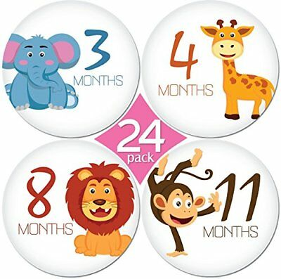 KiddosArt 24 Pack of 4 Premium Baby Monthly Stickers By 1 Happy Animal Sticker