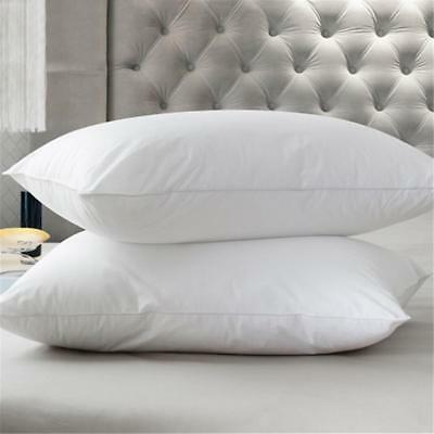 Hotel Pillows,Luxury Foam Pillow Core Orthopaedic Extra Support Bed 75X45CM
