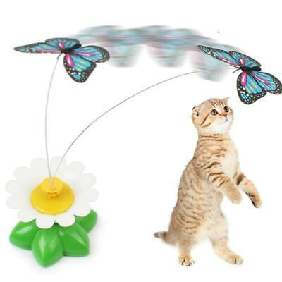 Pet Cat Puppy Electric Toys Teaser Interactive Cats Rotating Butterfly Funny Toy