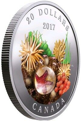 2017 1 Oz PROOF Silver $20 CANADIAN SEA STAR Under The Sea Coin.