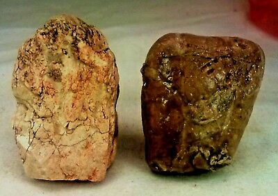 2 figurines from the Paleolithic Stone Age. Found together, JORDAN VALLEY