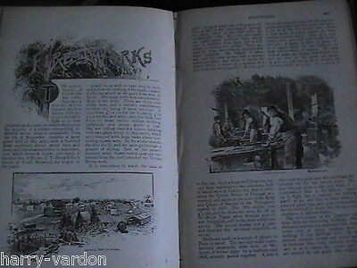 Fireworks Factory C T Brock Norwood London Old Victorian Antique Article 1891